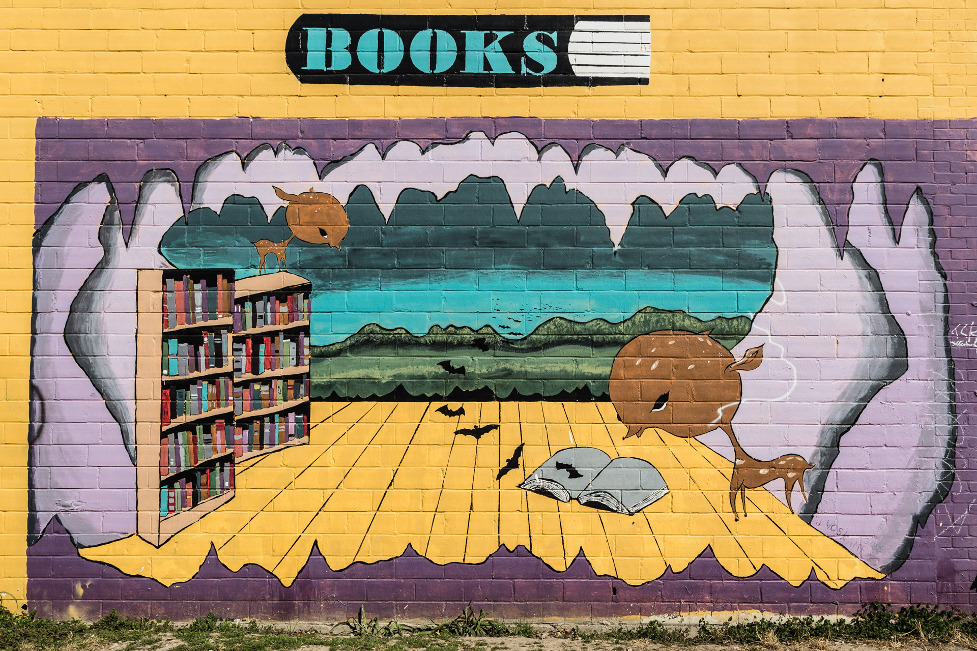 Austin Street Art (books)