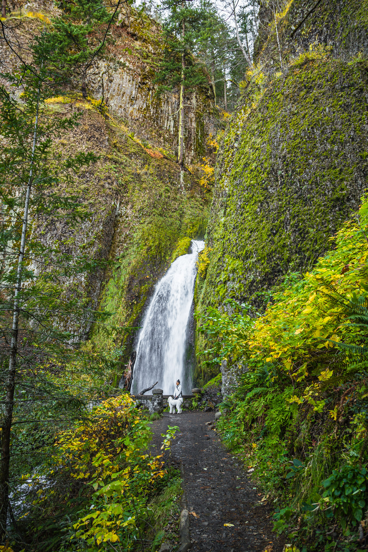 Columbia River Gorge (30)