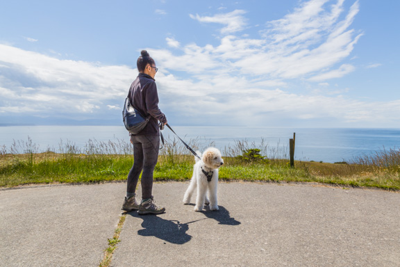 Epic Views At Fort Ebey On Whidbey Island