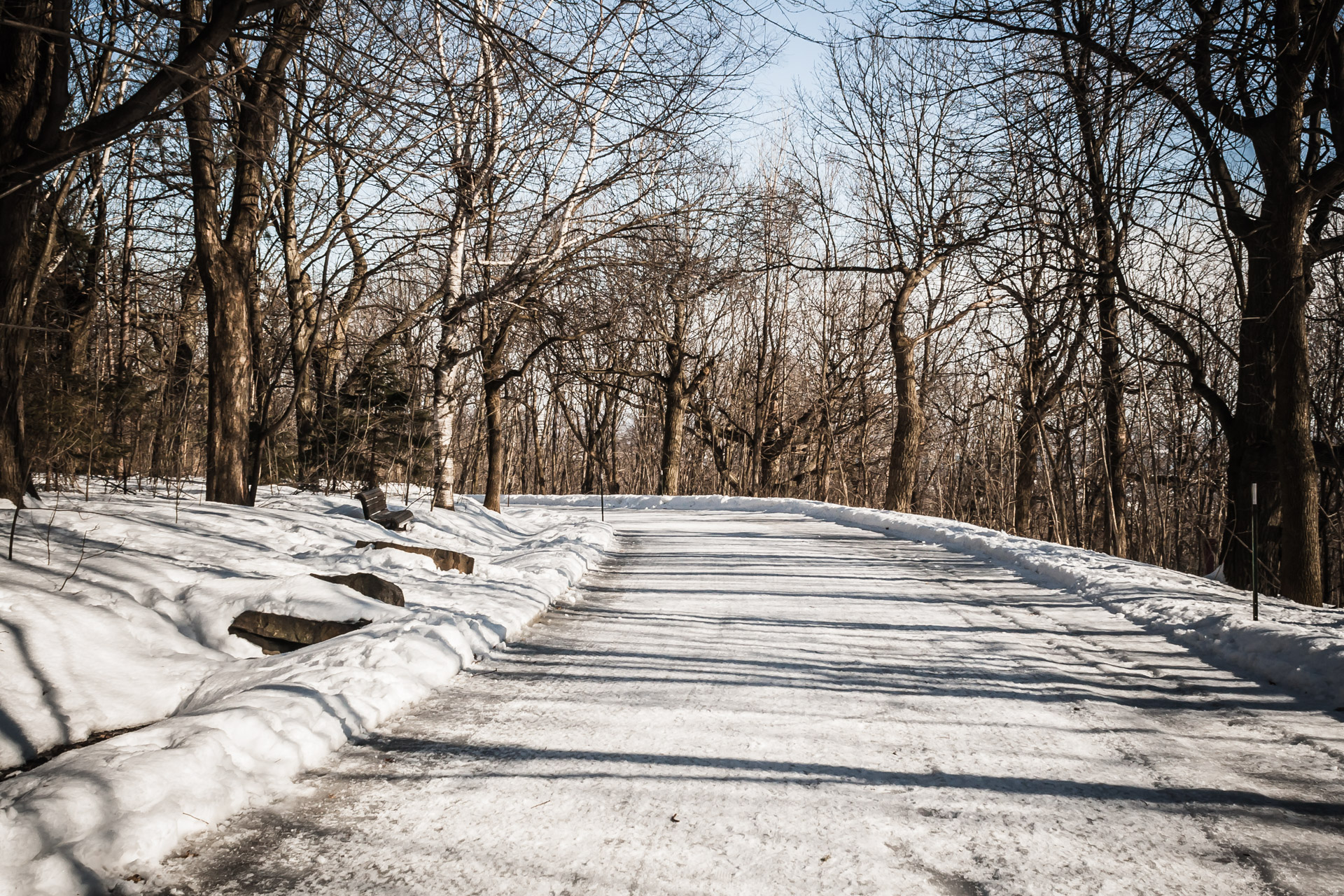 Finding Home In A Travel Destination (snowy path)