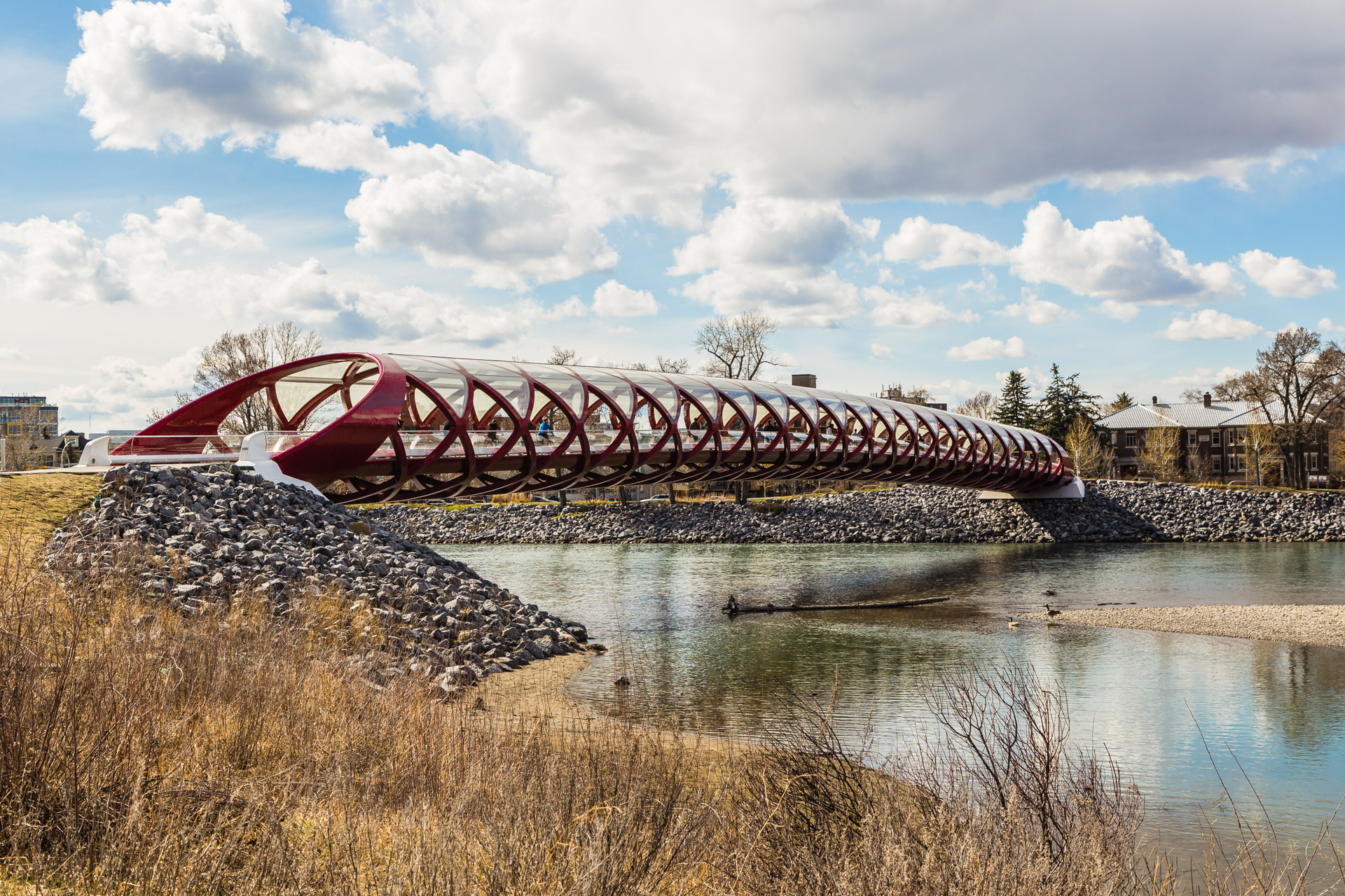 Peace Bridge (5)