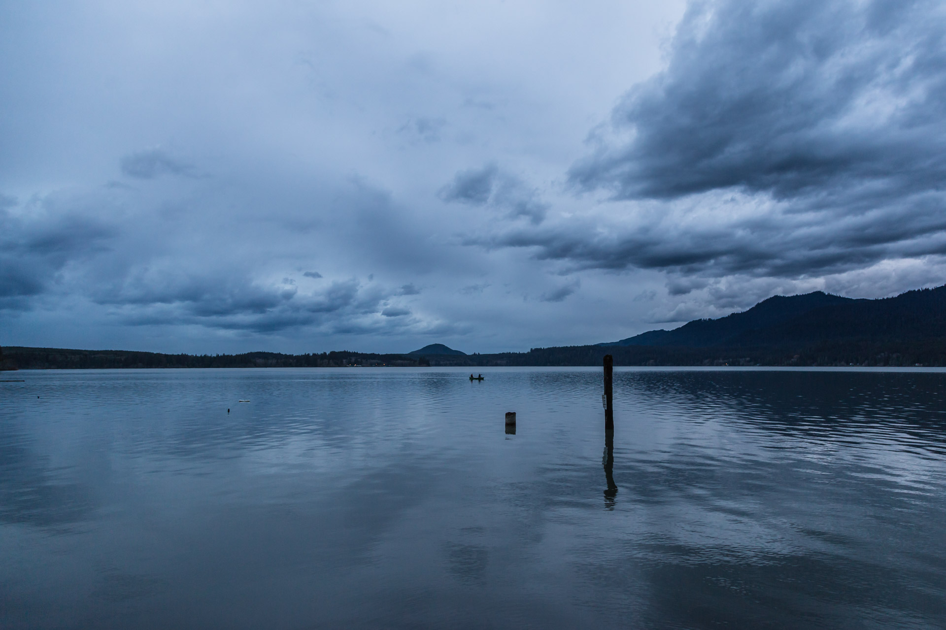 Lake Quinault (lake close)