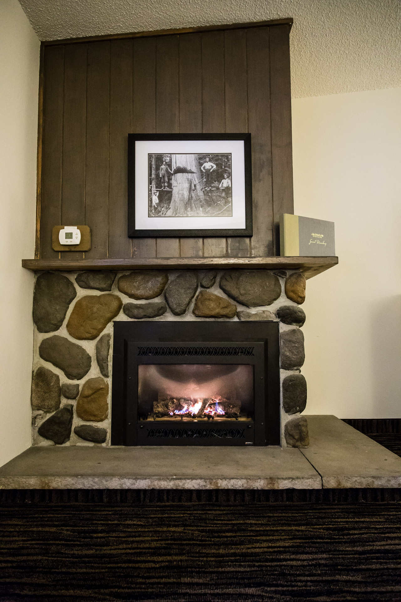 Lake Quinault (fireplace close)
