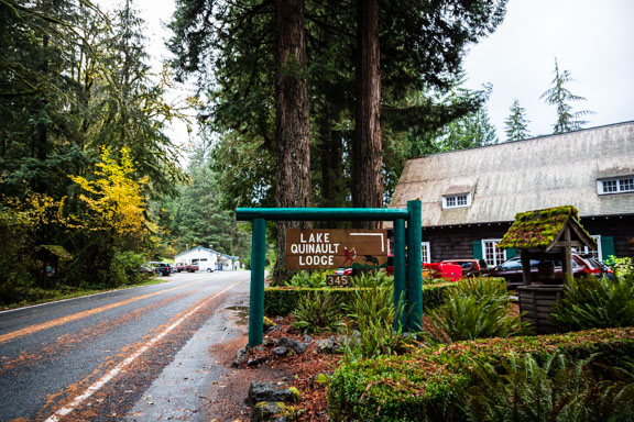 Lake Quinault Lodge: A Washington Gem Part 2