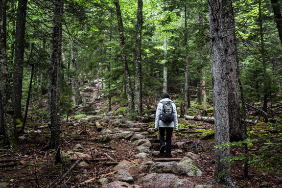 Penobscot Mountain To Sargent Mountain At Acadia National Park
