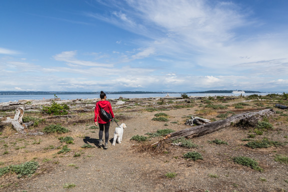 Prana's First Visit To A Beach On Bainbridge Island