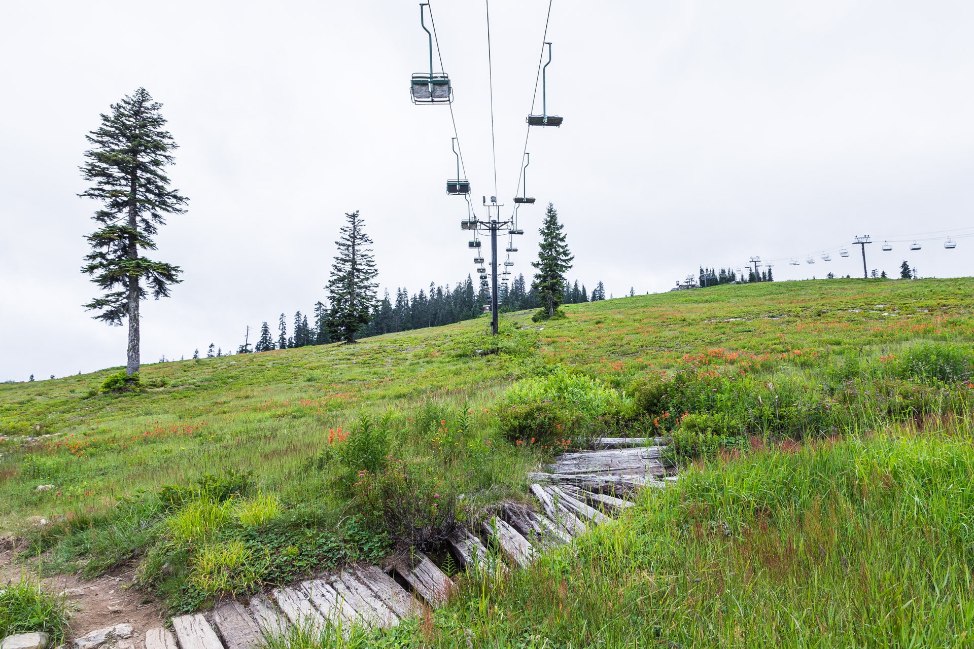 Ski Lift Snoqualmie (66)